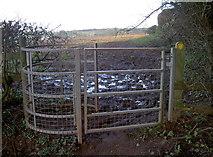 ST6062 : To Preston Farm by Neil Owen