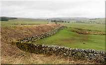 NY8693 : Field corner beside A68 by Trevor Littlewood
