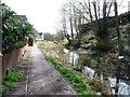 SO8504 : The Thames & Severn Canal above Bowbridge Lock by Christine Johnstone
