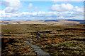 SD8597 : Pennine Way below Great Shunner Fell by Chris Heaton