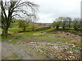 SE0261 : Derelict area alongside Hippings Lane, Burnsall by Humphrey Bolton