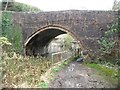 SO8702 : Bridge over the Thames & Severn Canal at Bourne Mill by Christine Johnstone