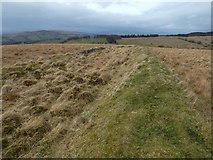 NS4178 : Old boundary by Lairich Rig