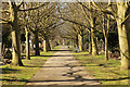 SK9870 : Canwick Road Old Cemetery by Richard Croft