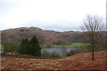 NY3404 : Above Loughrigg Tarn by DS Pugh