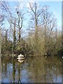 SO8642 : Duckhouse on Island Pool, Earl's Croome by Philip Halling