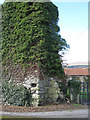 S7241 : Castle Ruin by kevin higgins