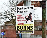 J3371 : Assembly election poster, Stranmillis, Belfast - April 2016(1) by Albert Bridge