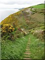 SX1850 : Steps on the coast path by Philip Halling