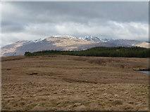 NN1521 : Grassy moorland between Lochan na Cruaiche and Loch an Stacain by Trevor Littlewood