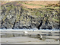 SN5986 : Exposed sediment beneath Moelcerni by John Lucas
