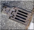 O2717 : Gully grating, Bray by Rossographer