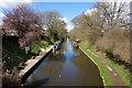 SJ8513 : Shropshire Union Canal by Ian S