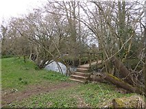SS8303 : Footbridge across River Creedy by David Smith