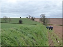 SS8502 : Footpath south of The Broxfords by David Smith