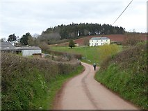 SS8402 : Road to Lower Creedy by David Smith