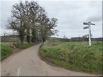 SS8302 : Thorn Hedges Cross road junction by David Smith