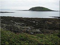 SX2551 : St George's or Looe Island by Philip Halling