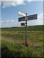 TM0757 : Roadsign on Mill Lane by Adrian Cable