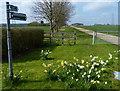 TL1194 : Public bridleway to Sheepwalk Farm by Mat Fascione