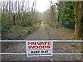 TQ2731 : Private woodland track north of High Beeches Cottages by Shazz