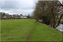SD5095 : Footpath heading North towards Burneside by Chris Heaton
