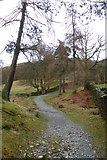 NY3404 : Bridleway to Ivy Crag by DS Pugh