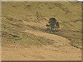 SN7688 : Drosgol farm by Nigel Brown