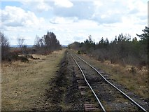 N1517 : Light railway on the Lough Boora Peatlands by Oliver Dixon