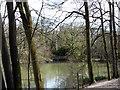 TQ2729 : Fish Pond, Nymans Wood by PAUL FARMER