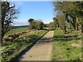SU2985 : Bend in the Path by Bill Nicholls