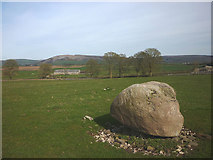 SD4979 : Shap granite erratic near Beetham Hall by Karl and Ali