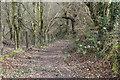 ST1899 : Sirhowy Valley Walk below Argoed fawr by M J Roscoe