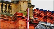 SE2933 : King Street, Leeds by Mark Stevenson