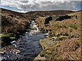 SK1799 : Old sheepfold in Hordron Clough by Neil Theasby