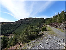 NY2427 : Track to Dodd by Anthony Foster