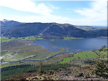 NY2427 : View from Dodd towards Derwent Foot by Anthony Foster