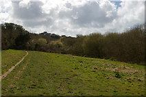SW6525 : Track along the Loe Valley, between Degibna and Lower Nansloe by Christopher Hilton