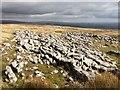 SD7372 : Limestone pavement on Newby Moss by John H Darch