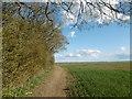 TQ6750 : The Greensand Way approaching Nettlestead Green by Marathon