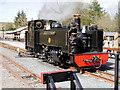 SN7376 : Vale of Rheidol Railway Locomotive No 9, Prince of Wales by David Dixon
