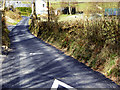 SN6878 : Narrow Lane from Station to Hamlet at Aberffrwd by David Dixon