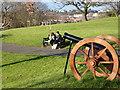 SO8554 : Fort Royal Park - replica cannon by Chris Allen