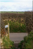 SW6523 : Footpath leaving lane, north of Gunwalloe by Christopher Hilton