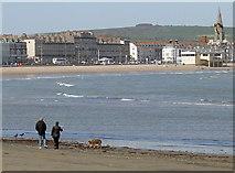 SY6879 : Dogs allowed in April by Neil Owen