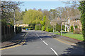 SU9466 : Woodby Drive, Sunningdale by Alan Hunt