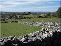 S7944 : Fields and Walls by kevin higgins