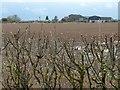 SE5261 : Ember Hill farm from High Moor Lane by Christine Johnstone