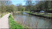 SK3155 : The Cromford Canal at High Peak Junction by Dr Duncan Pepper