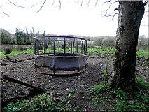 H5173 : Animal feeder, Killycurragh by Kenneth  Allen